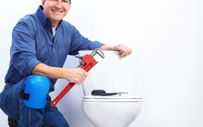 Don't Get Hung Up by Toilet Maintenance Problems