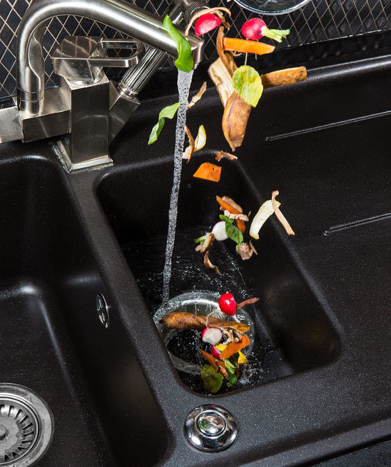 Garbage Disposal Repair or Replace?