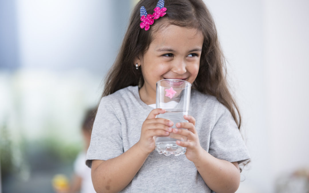 The 5 Best Options for a Water Treatment System in Your Home
